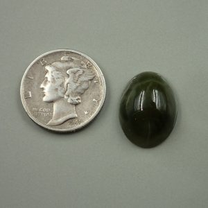Jade-42 Nephrite 9.80ct. 12x16mm $25.00